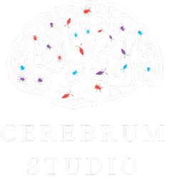 cerebrumstudio.ru